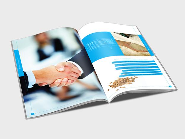 thiet-ke-ho-so-nang-luc-cong-ty-catalogue-brochure-6