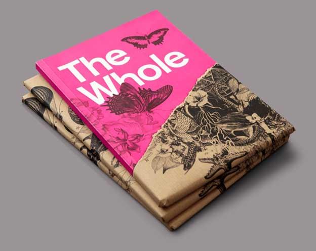 thiet-ke-ho-so-nang-luc-cong-ty-catalogue-brochure-8