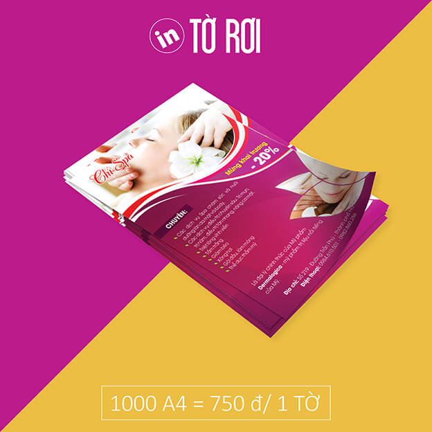 to-roi-to-gap-brochure