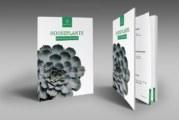 Thiết kế catalogue đẹp – hình thức marketing hiệu quả chi phí đầu tư thấp