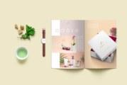 Các tiêu chí nên sử dụng đảm bảo thiết kế catalogue đẹp